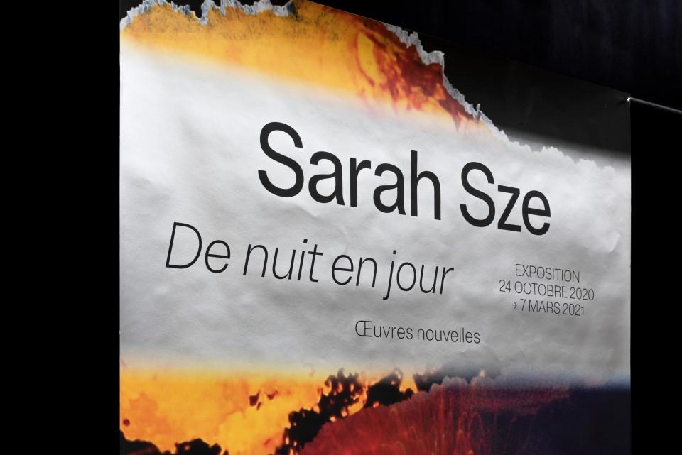 sarah_sze_2020_super_terrain_7.jpg